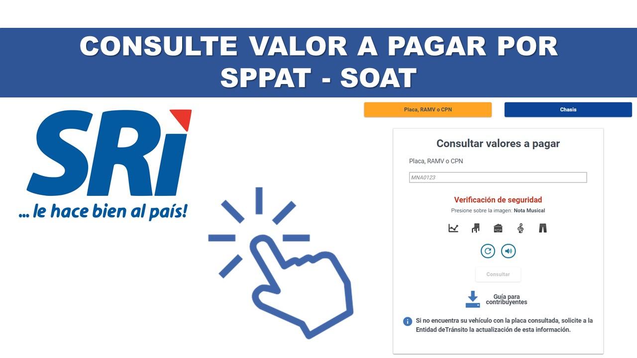 Consulte el Valor a Pagar por SPPAT - SOAT